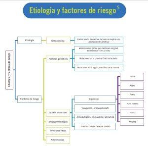 fpi_etiologia_factores_riesgo